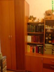 стенка-горка  ( для девочки от  6-20 лет) и стол письменный